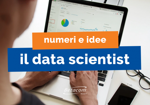 il data scientist